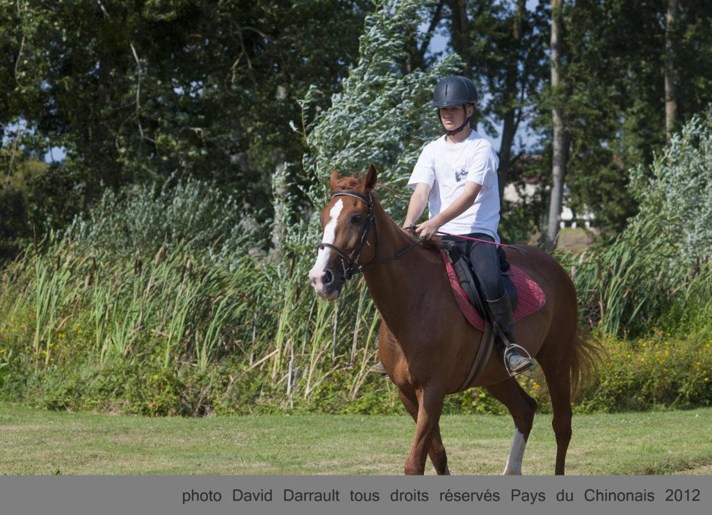 Equitation©DDarrault Pays (22)-002