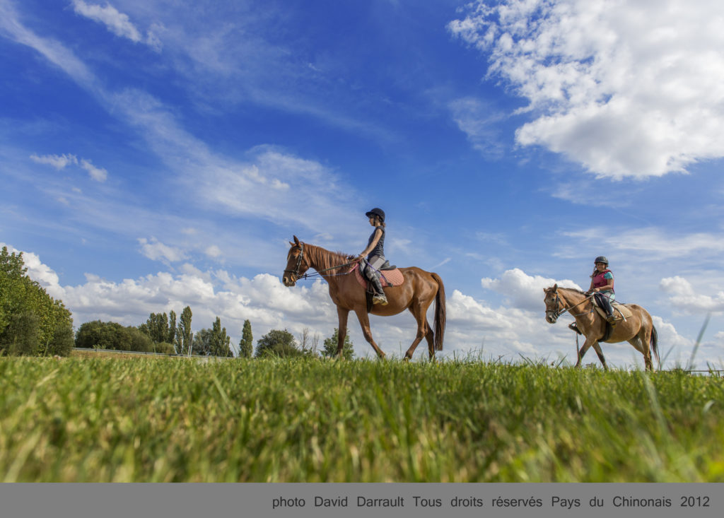 Equitation©DDarrault Pays (22)-003
